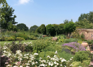 Beautiful traditional garden in Gloucestershire with white flowers in the foreground