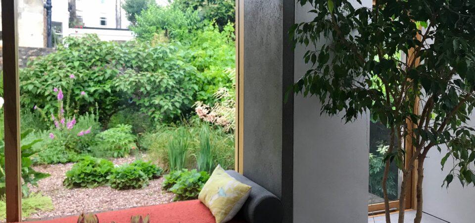 Urban Wildlife Garden Bristol through window
