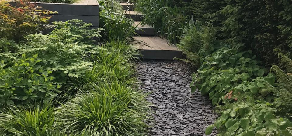 Path through garden in Contemporary Garden in Abbots Leigh