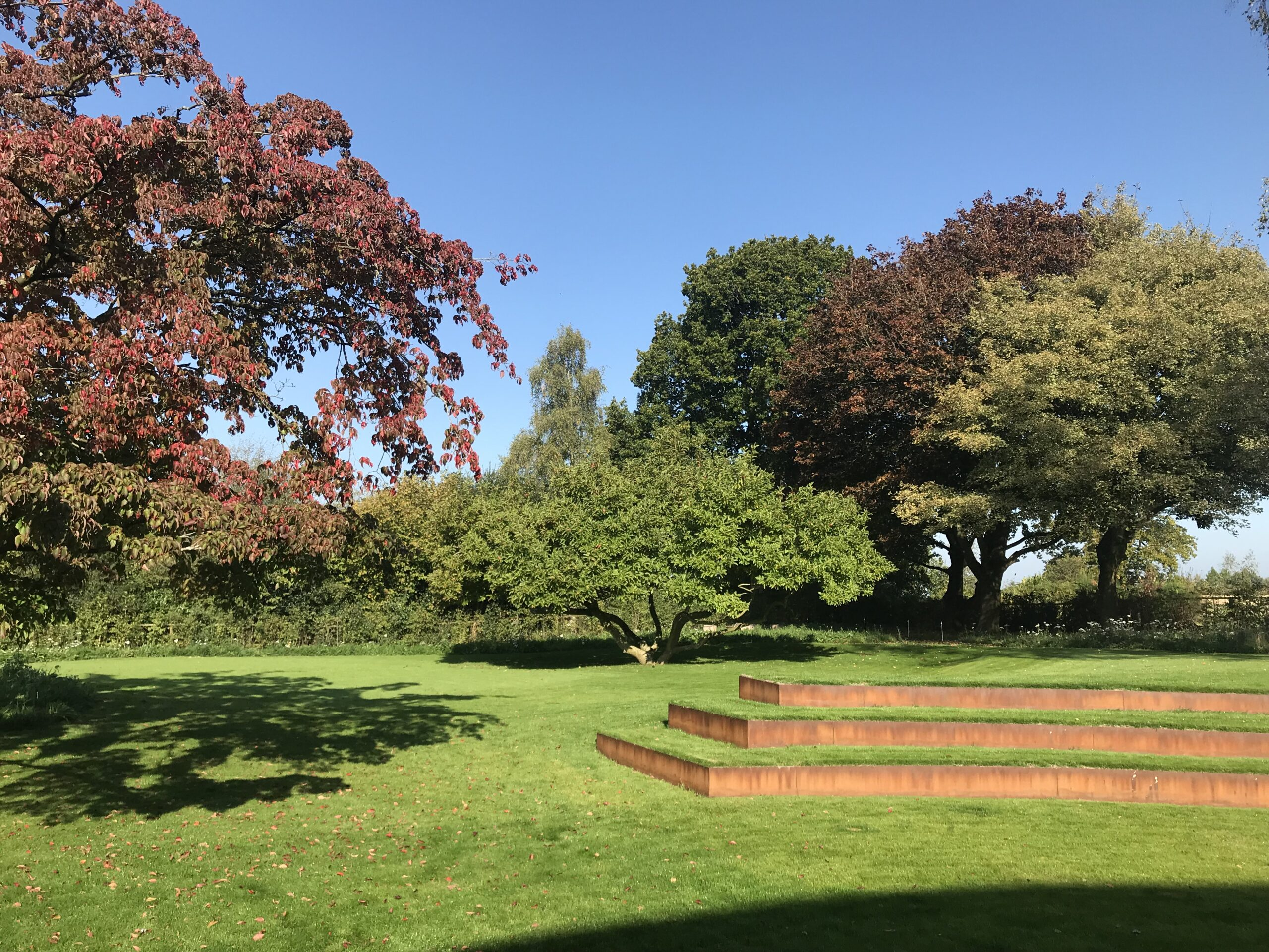 lawn and trees in Contemporary Garden in Abbots Leigh
