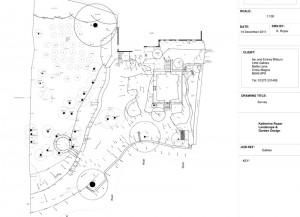 Design Survey